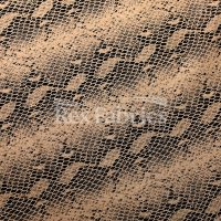 Venom-Clear-Dot-4-way-stretch-nylon-spandex-Beige