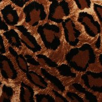 leopard-brown-black-velvet